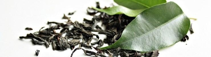 Среднелистовой цейлонский чай