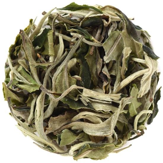 Белый чай Бай Му Дан - фото 4836