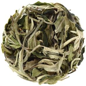 Белый чай Бай Му Дан